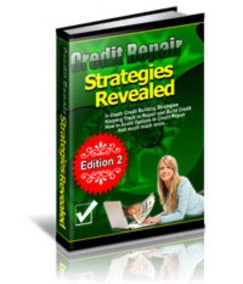 Product picture 10 credit Repair Stretegies